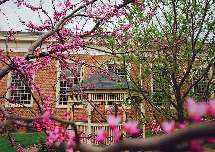gazebo and flowers on queens university campus